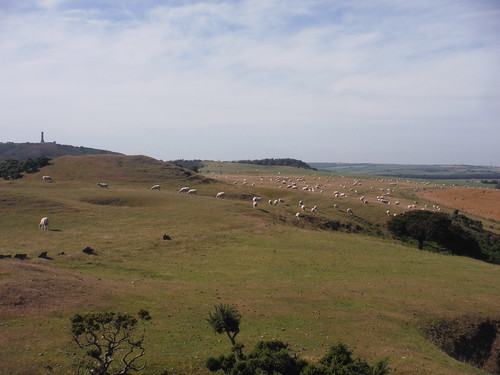 Backview of Bronkham Hill