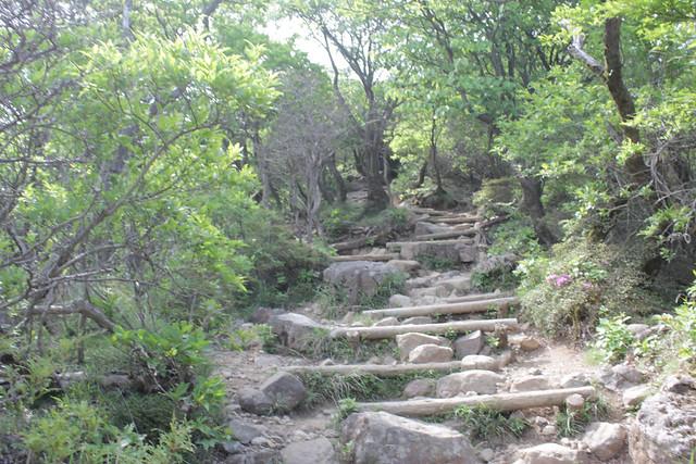 20140601-韓国岳-0070.jpg