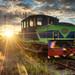 A Golden Locomotive by henriksundholm.com