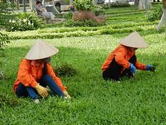 Protected Gardeners