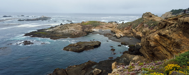 Point Lobos landscape