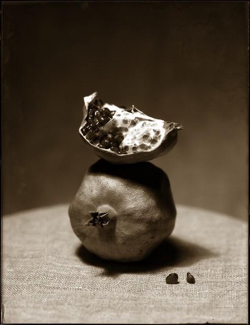 Pomegranate sketch