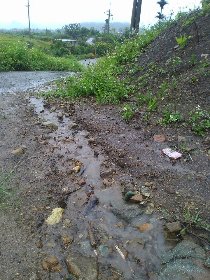地表逕流的土壤已經沖到不見,露出石頭