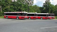 Shuttle UM Gillig Low Floor Advantage Diesel Buses