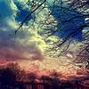 Lunchtime   #clouds #cloud #cloudporn #lookup #sky #skies #skyporn #cloudy #instacloud #instaclouds #instagood #nature #skyline #overcast #instasky #crazyclouds #cloud_skye #skyback #insta_sky_lovers #iskyhub