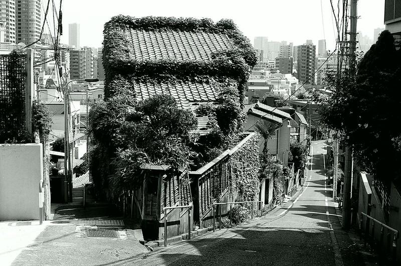 目白・川越 by Nikon FM2