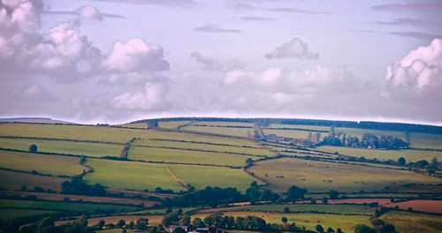 Countryside in North Wexford