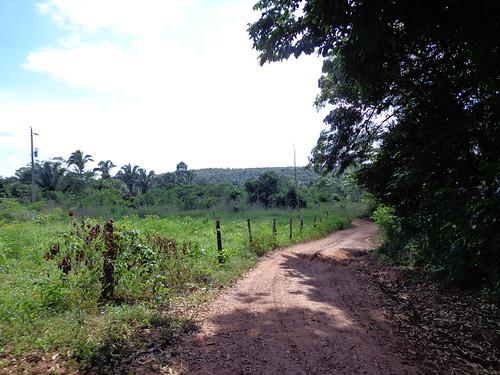 Estrada rural em Nazaré - Tocantins