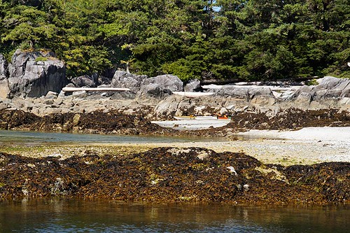 Kayaks on the Beach in the Bunsby Islands, Big Bunsby Marine Park, Vancouver Island, British Columbia. Photo: Santa Brussouw.