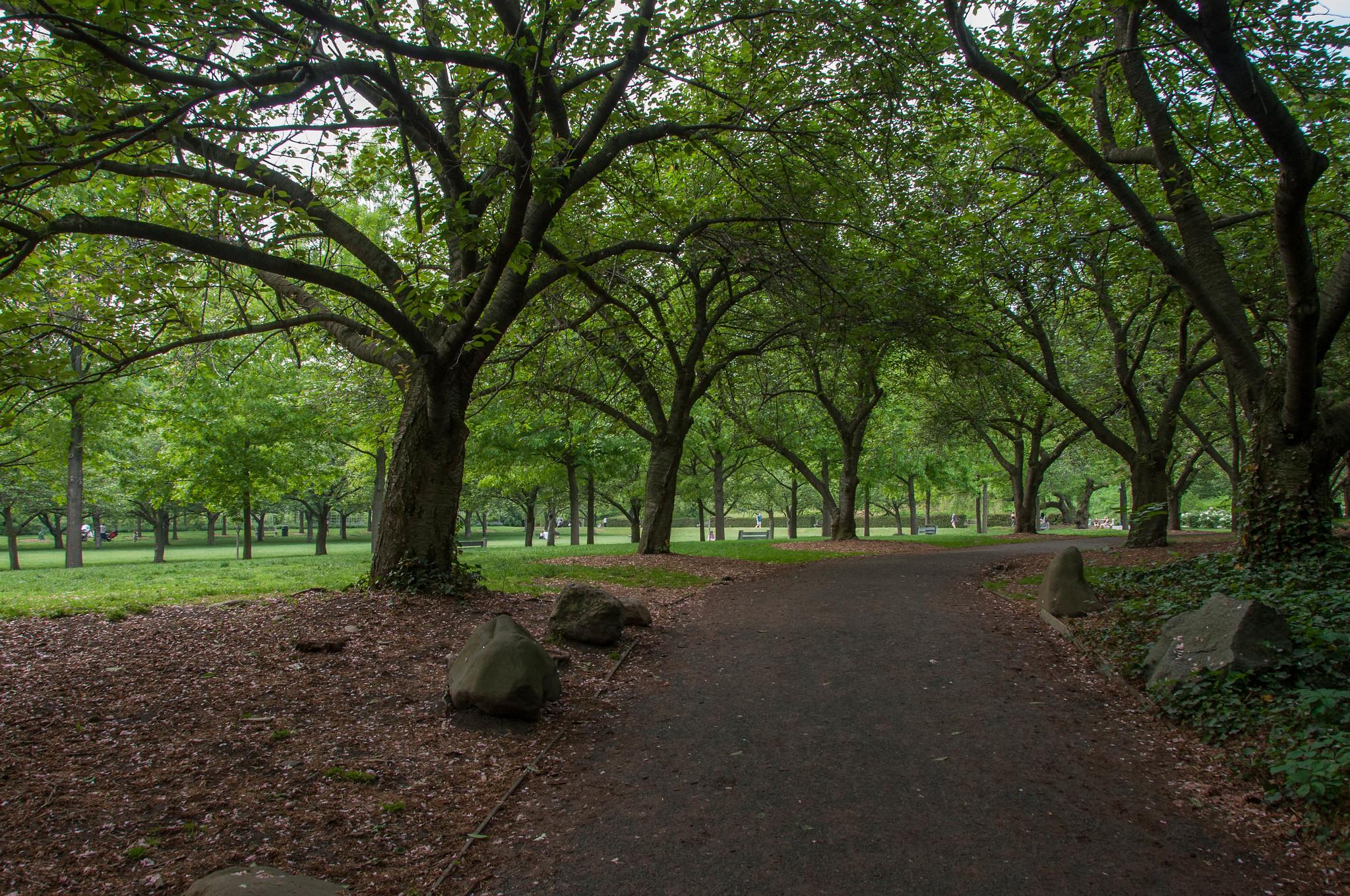 Brooklyn Botanic Garden May 2015 Flickr Photo Sharing