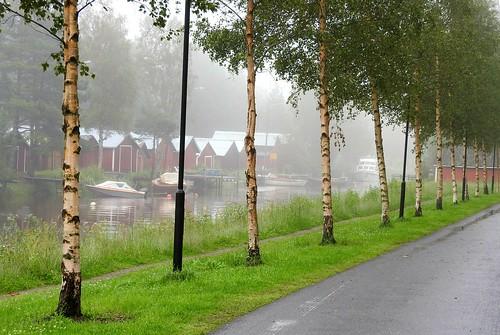 fog finland river boats boat birches kokkola birchtrees sunti foggyday boathouses ostrobothnia foginthebackground rowofbirchtrees lineofbirchtrees lineofbirchesalongtheriver
