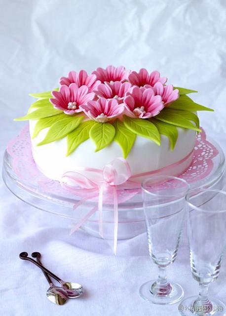 Spring Bow Cake by Kinuskikissa