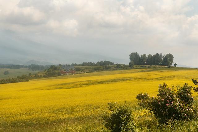 IMG_9507 National Park Nízké Tatry 2