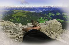 Passero di montagna
