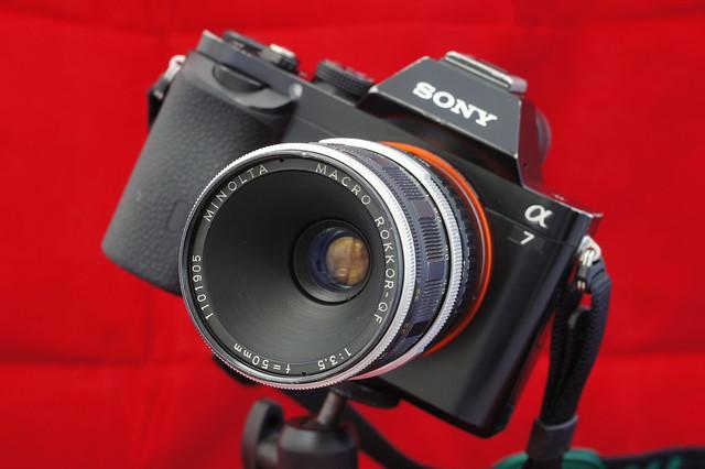 α7_MINOLTA MACRO ROKKOR-QF 50mm F3.5 4