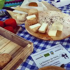 Los quesos de La Pastora de Haría en el Mercado artesanal, agrícola y ganadero de Haría. Productos ecológicos de la #ReservaBiosfera de #Lanzarote.  #queso #canaryislands #Canarias #lanzaroteesganadera #cheese #pastora #haría #mercado #ecológico #producto