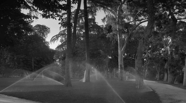 Sprinklers at Parque Retiro, Madrid (2016)