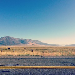 Zoom Zoom :mountain_bicyclist:  #roadtrip #highway #yellow