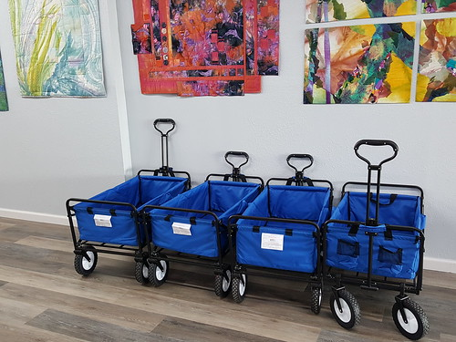 Store Carts