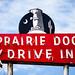 Prairie Dog Drive In by Thomas Hawk