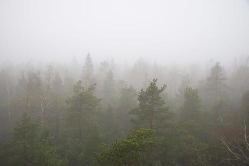 suomi finland nationalpark hike näkötorni kansallispuisto vaellus viewingtower southernostrobothnia isojoki lauhanvuori