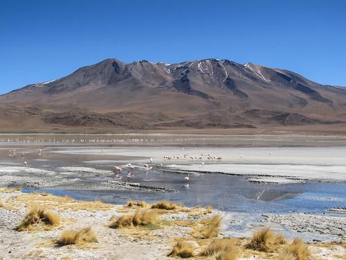 Le Sud Lipez: la Laguna Hedionda