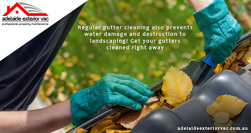 Adelaide Gutter Cleaning - Adelaide Exterior Vac
