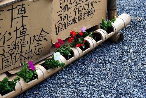 Konan Fuji Matsuri 089r