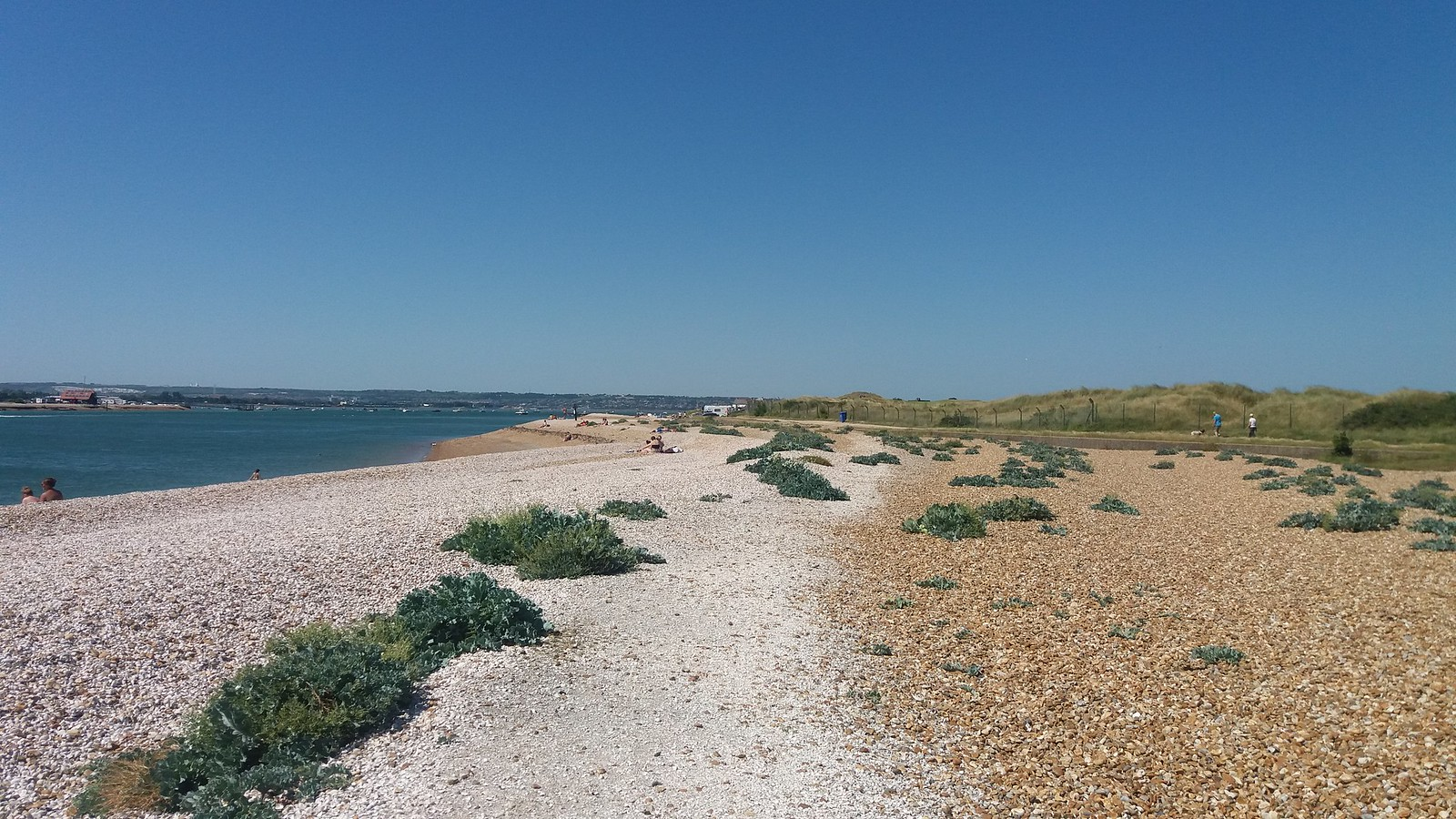 20160719_150646 View from beach back towards the Ferry Inn