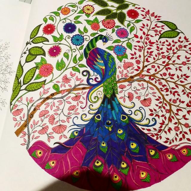 Colorin coloran ¿Os apetece pintar? 17481204572_6e9b4fefaa_z