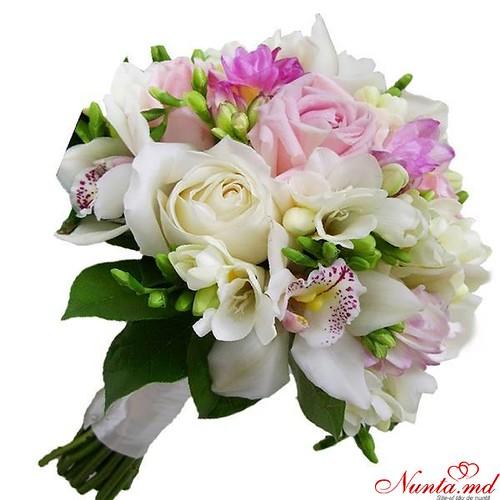 Salon Floristic MoldFlowers > Foto din galeria `1`
