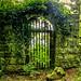 Versteckte Tür - Hidden Door by vampire-carmen