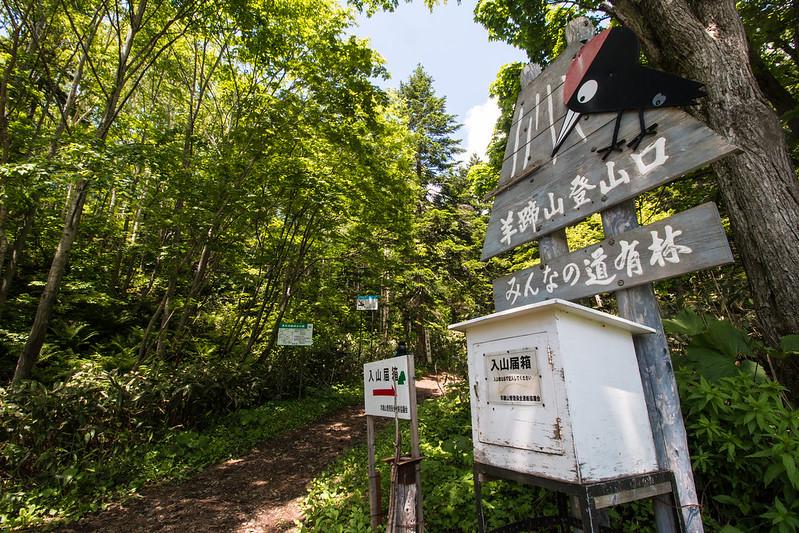 20150614-北海道羊蹄山(2日目)-0173.jpg