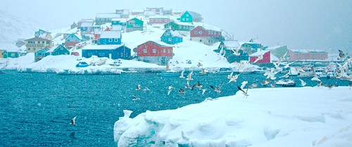 houses sea urban seagulls snow ice nature colors birds landscape arctic greenland groenland gronland maniitsoq sukkertoppen qeqqata clicheforu afreezingcolorfultakeoff