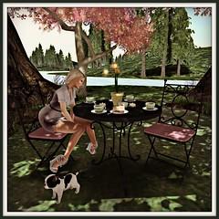 Circa garden set - spring cafe NEW