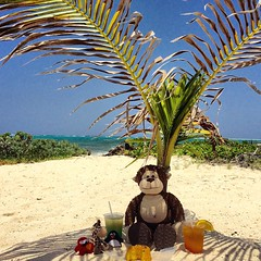 Argh, ahoy me mates! Wondering where I have been to date? Well, me and my little pirate pals have been sailing the seas and stopped at the big Cayman Island to enjoy the Caribbean Sea breeze! Here we sit in Rum Point, drinking rum runners, eating rum cake