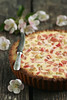Rabarberi-hapukoorekook / Rhubarb and sour cream cake