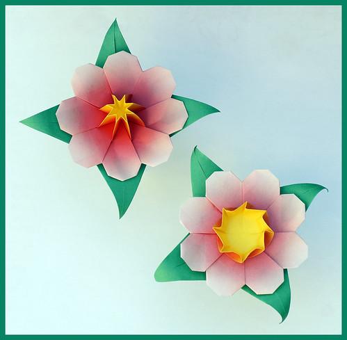 Origami Flower 2 (Shuzo Fujimoto)
