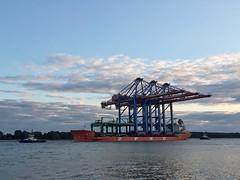 Neue Containerbrücken für den Hamburger Hafen.  #containerbrücke #hafenhamburg #hamburgerhafen