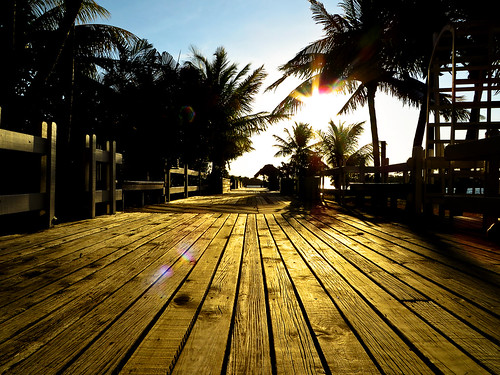 morning light red sun sunlight sunrise dawn morninglight palmtrees flare boardwalk roatan sunbeams sunflare