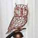 Western Screech Owl 2 Wire Sculpture by Ruth Jensen