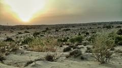 شام اور ریگستان