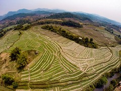 Drone shot of the dramatic landscapes in Phongsaly Province, Laos • • • • • #drone #travel #laos #landscape #artofvisuals #athomeintheworld #awesome_earthpix #awesome_photographers #awesomeearth #awesomeglobe #TLPicks #bestplacestogo #discoverglobe #earth