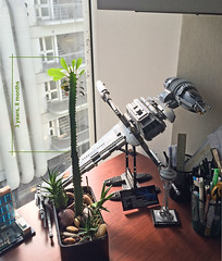 Cacti and LEGO
