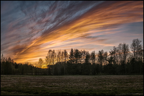 trees sunset sky panorama orange cloud beautiful field grass forest evening himmel linda skog treeline hdr träd solnedgång åker moln vacker purmo