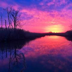 Purple rising sun #sunrise #summer #bombayhook #nature #color #purple #nationalwildlife refuge #NWR #delaware
