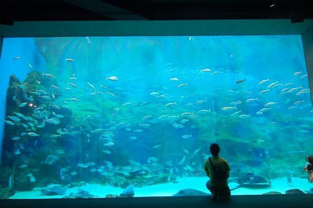 佐世保 水族館