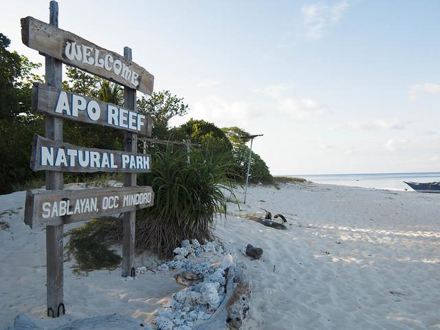 Apo Reef Island