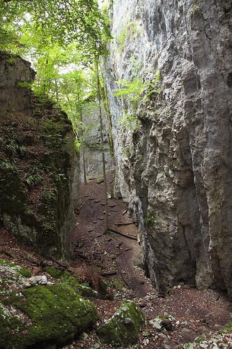 Vers la grotte des nains