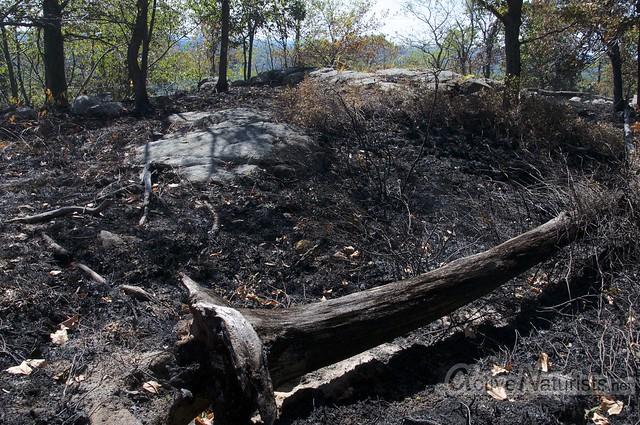 burnt view 0000 Harriman State Park, New York, USA